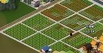 整齊的莊稼地 - 開心網開心城市